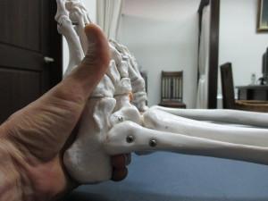坐骨神経痛と股関節