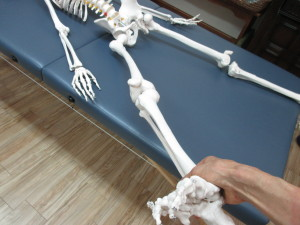 腰痛と股関節(1)