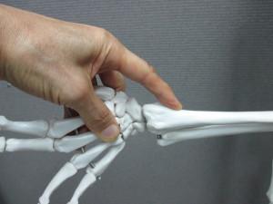 親指の付け根の痛み(1)